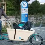 Schubkarren-Transportrad